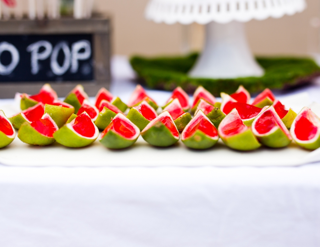 WATERMELON PARTY PHOTOS-41